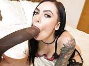 Beautiful girl in stockings gets destroyed by a black monsterdick