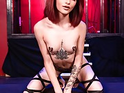 Lola Fae gets her gangbang on in this hot 5 on 1 porn scene