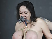 BBW Lesbian Domination of curvy Andrea punished in stockings by dominatrix Jay