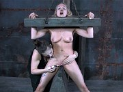 Rain DeGrey busty blonde is bound in woorden stock and toyed